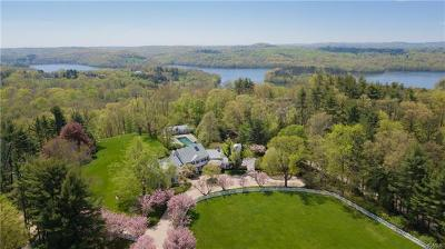 Westchester County Single Family Home For Sale: 55 Holly Branch Road