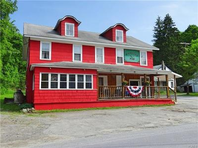 Fremont Center Commercial For Sale: 553 County Route 94-Tr3