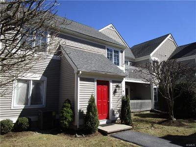 Carmel Condo/Townhouse For Sale: 802 Chestnut Drive