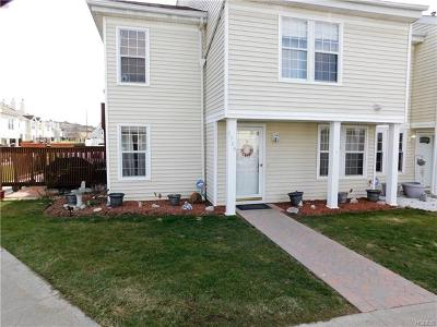 Chester Condo/Townhouse For Sale: 1509 Whispering Hills