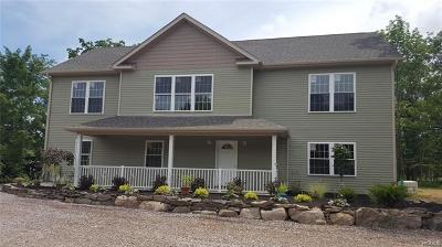 Sullivan County Single Family Home For Sale: 35 Winters Road