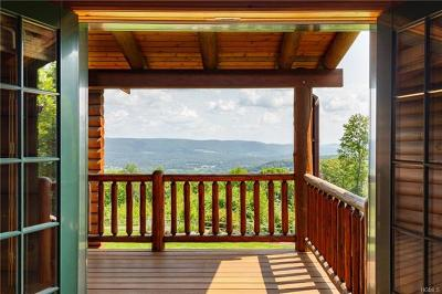 Dover Plains Single Family Home For Sale: 111 Bretti Lane