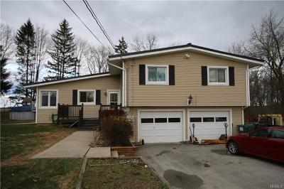 Pine Bush Single Family Home For Sale: 88 Red Mills Road