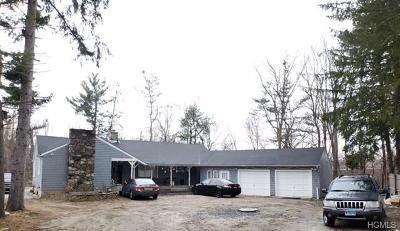 Putnam County Single Family Home For Sale: 273 Tonetta Lake Road