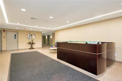 White Plains Condo/Townhouse For Sale: 21 Lake Street #1E