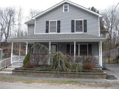 Port Jervis Single Family Home For Sale: 4 Patterson Street