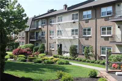 Rental For Rent: 302 Piermont Avenue #3B