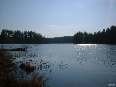 Residential Lots & Land For Sale: Swamp Pond Road Tr 37