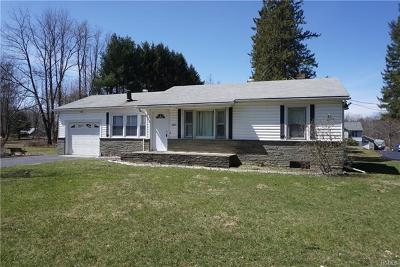 Hyde Park Single Family Home For Sale: 1507 Route 9g