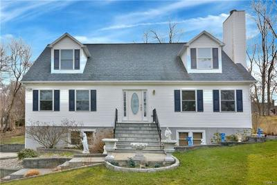 Westchester County Single Family Home For Sale: 22 Elm Road