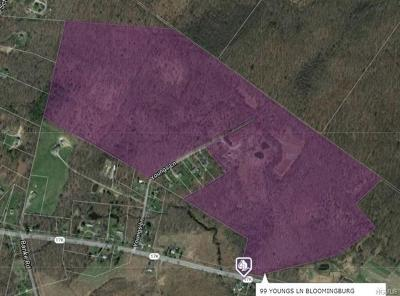 Bloomingburg Residential Lots & Land For Sale: 99 Youngs