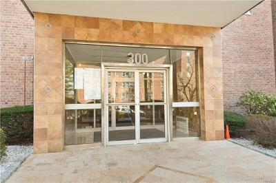 Yonkers Co-Operative For Sale: 300 North Broadway #5B
