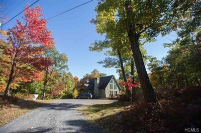 Putnam County Single Family Home For Sale: 537 East Mountain Road