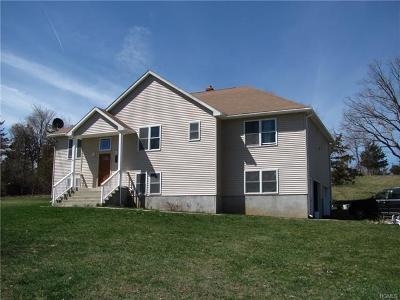 Patterson Single Family Home For Sale: 29 Burdick Road