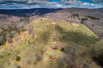 Dover Plains Single Family Home For Sale: 640 Butts Hollow Road