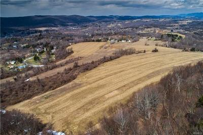 Amenia Residential Lots & Land For Sale: 28 Yellow City Road