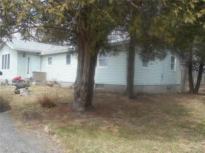 Port Jervis Single Family Home For Sale: 2654 County Route 1