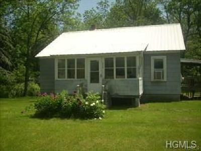 Single Family Home For Sale: 4138 State Route 209
