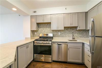 White Plains Condo/Townhouse For Sale: 14 Nosband Avenue #6G
