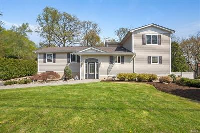 Nanuet Single Family Home For Sale: 53 Silver Birch