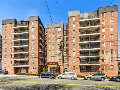 Yonkers Co-Operative For Sale: 61 Bronx River Road #4I