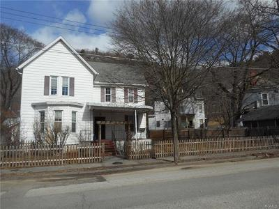 Port Jervis Single Family Home For Sale: 7 Washington Avenue