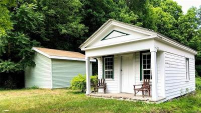 Rhinebeck Single Family Home For Sale: 759 Salisbury Turnpike