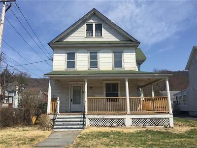 Port Jervis Single Family Home For Sale: 229 West Main Street