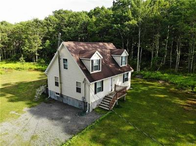 Wurtsboro Single Family Home For Sale: 244 County Rd 56