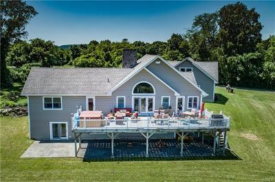 Wingdale Single Family Home For Sale: 4 Davis Road
