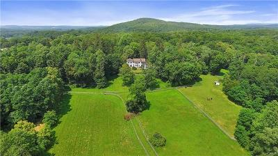 Dutchess County Single Family Home For Sale: 2728 Route 44