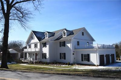 Dobbs Ferry Single Family Home For Sale: 29 Osceola Avenue
