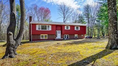 New Paltz Single Family Home For Sale: 3 Bud Street