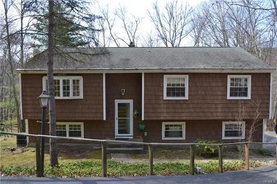 Putnam County Single Family Home For Sale: 41 Shindagen Hill Road