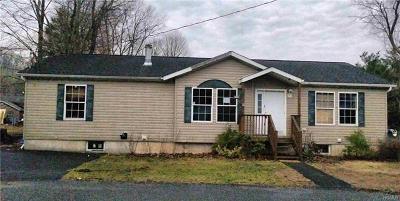 Ellenville Single Family Home For Sale: 4 Enderly Lane