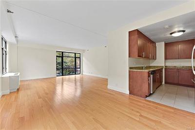 Bronx NY Condo/Townhouse For Sale: $735,000