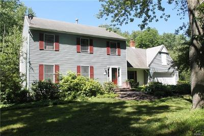 Dutchess County Single Family Home For Sale: 7 Dale Road