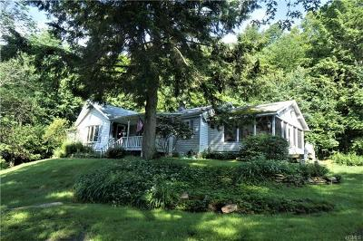 Single Family Home For Sale: 1590 Old Route 17
