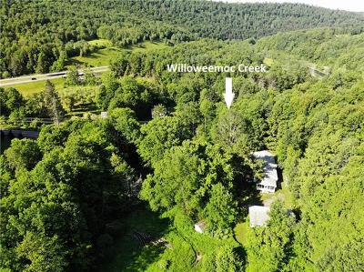 Residential Lots & Land For Sale: * Old Rt 17