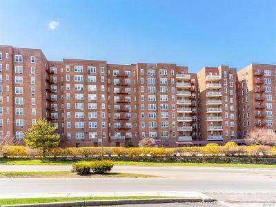 Yonkers Co-Operative For Sale: 245 Rumsey Road #1M