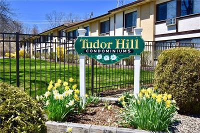 Condo/Townhouse For Sale: 704 Tudor Hill