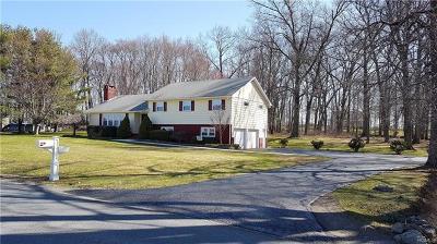 Middletown Single Family Home For Sale: 296 Lybolt Road