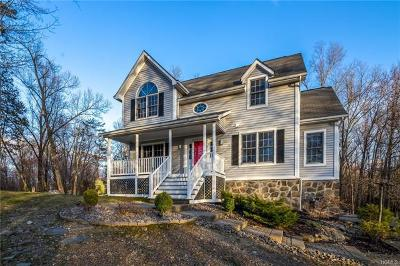 Dutchess County Single Family Home For Sale: 7 Stonewall Drive