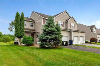 Washingtonville Single Family Home For Sale: 21 McLaughlin Way