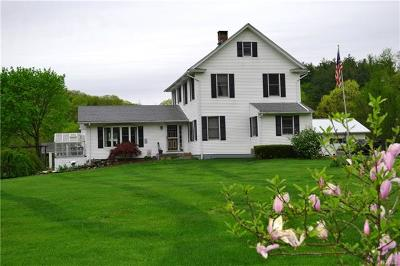 Pleasant Valley NY Single Family Home For Sale: $499,999
