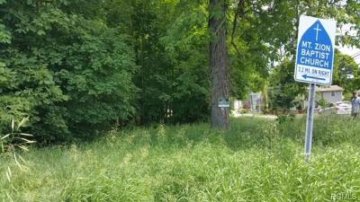 Stormville Residential Lots & Land For Sale: 194 Route 216