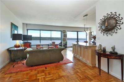 Bronx Condo/Townhouse For Sale: 4455 Douglas Avenue #15K