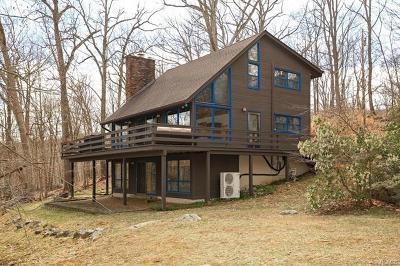 Putnam Valley Single Family Home For Sale: 332 Dennytown Road