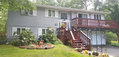 Wurtsboro Single Family Home For Sale: 22 Valley Stream Drive