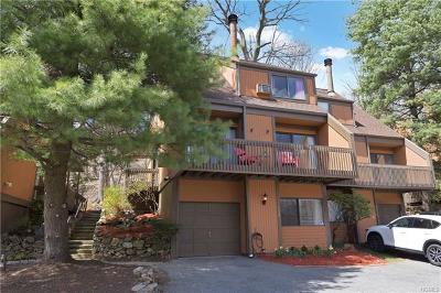 Dobbs Ferry Single Family Home For Sale: 132 Ogden Avenue